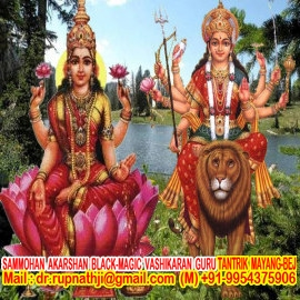 best online tantrik astrologer